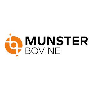 Munster Bovine